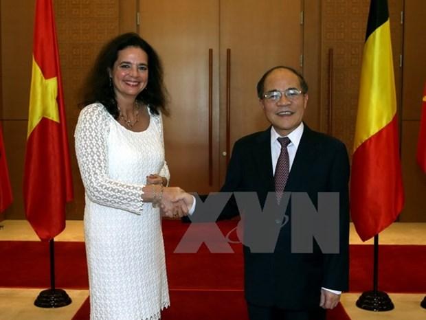 Entretien entre le president de l'AN vietnamienne et la presidente du senat belge hinh anh 1