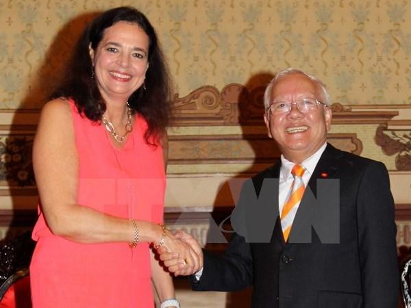 Ho Chi Minh-Ville oeuvre pour le developpement des relations avec la Belgique hinh anh 1