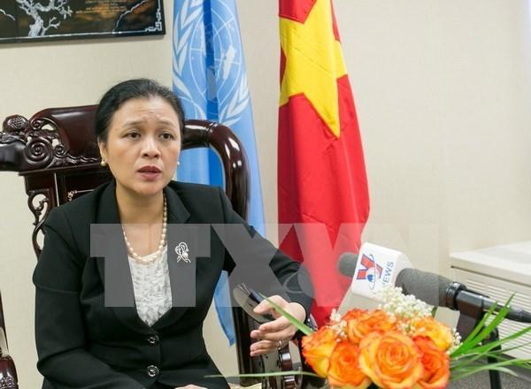Le Vietnam soutient les efforts de maintien de la paix de l'ONU hinh anh 1