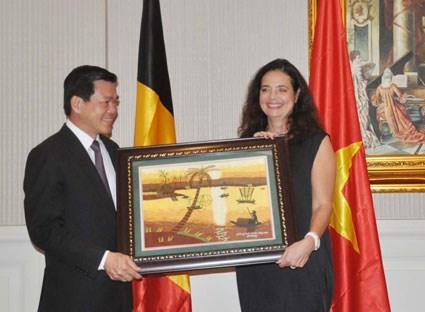 La Belgique aide Ba Ria-Vung Tau a traiter ses dechets hinh anh 1