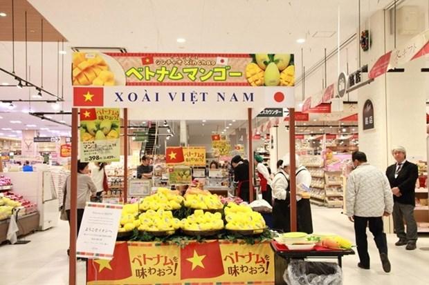 La mangue de Cat Chu est presente au Japon hinh anh 1