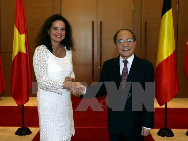 La presidente du Senat belge termine sa visite officielle au Vietnam hinh anh 1
