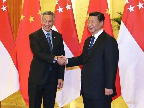 Singapour et la Chine renforcent leurs relations bilaterales hinh anh 1