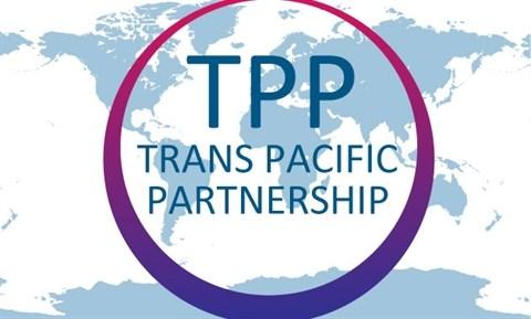 Le TPP, moteur de la croissance de la production domestique hinh anh 3
