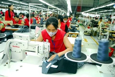 Le TPP, moteur de la croissance de la production domestique hinh anh 1