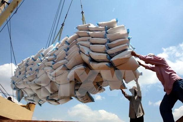Plus de cinq millions de tonnes de riz exportees en dix mois hinh anh 1