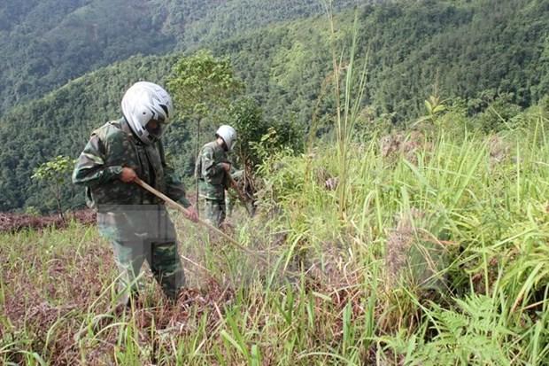 L'Association de soutien au reglement des consequences des bombes et mines fete son anniversaire hinh anh 1