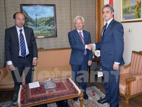 Vietnam et Egypte cooperent dans l'etude de politiques hinh anh 1