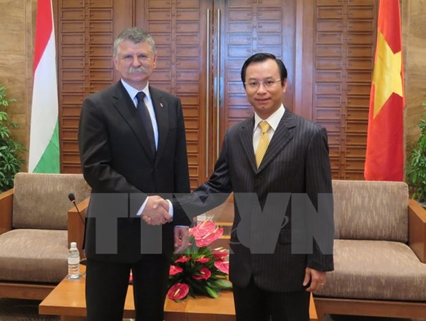 La delegation de l'Assemblee nationale hongroise en visite a Da Nang hinh anh 1
