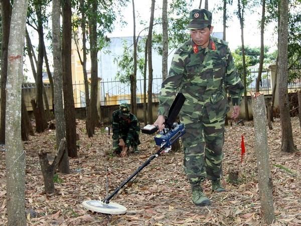 Deminage : aide sud-coreenne pour l'entrainement d'equipes vietnamiennes hinh anh 1