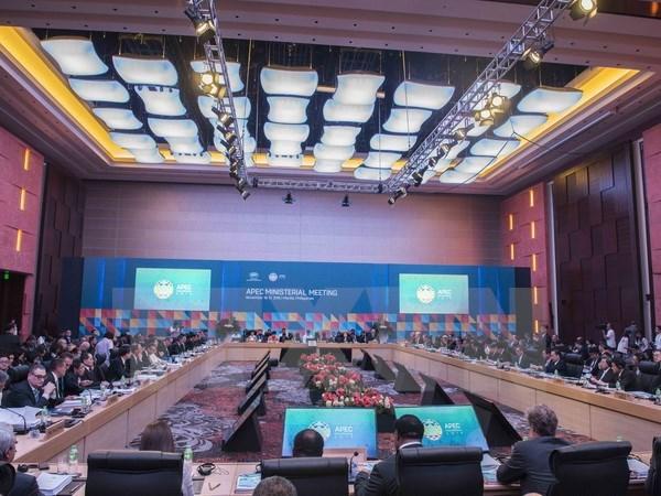 Ouverture de la conference ministerielle des AE et de l'Economie de l'APEC hinh anh 1