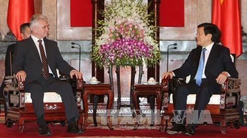 Le chef de l'Etat recoit le President du Senat tcheque hinh anh 1
