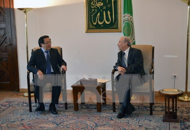 Vietnam – Egypte : renforcement des relations bilaterales hinh anh 1