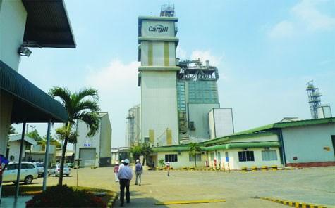 Alimentation animale: Cargill augmente ses investissements au Vietnam hinh anh 1