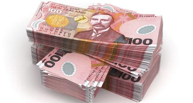 La Nouvelle-Zelande investira plus de 130 millions de dollars en ASEAN hinh anh 1