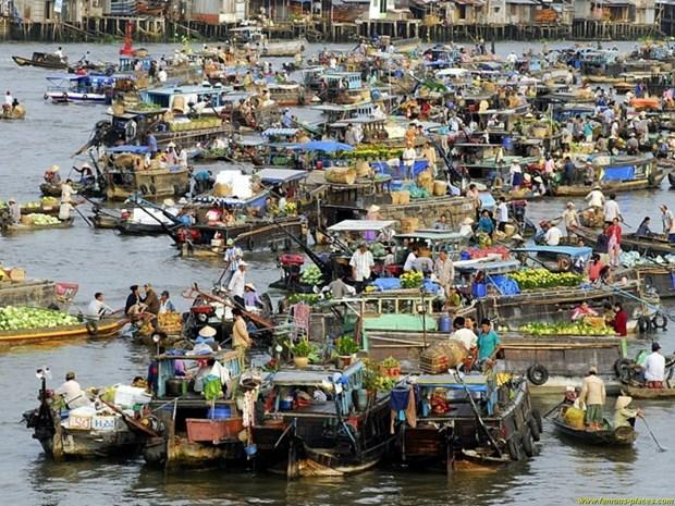Can Tho accelere la construction d'un Musee de l'histoire naturelle du fleuve Mekong hinh anh 1