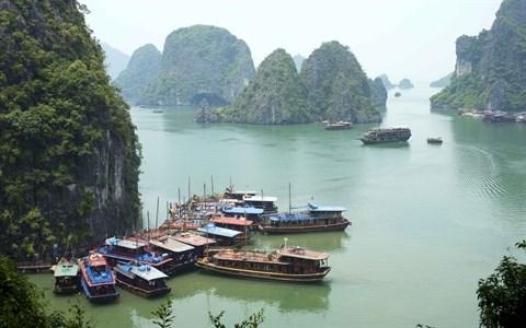 Des solutions contre la «surcharge» en haute saison de la baie de Ha Long hinh anh 1