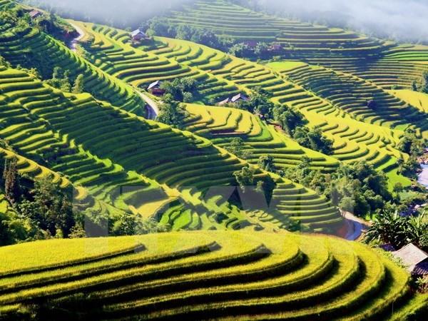 Colloque sur l'Annee nationale du tourisme 2017 au Nord-Ouest - Lao Cai hinh anh 2
