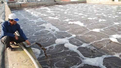 Vietnam - Allemagne: Renforcer la cooperation dans le traitement des eaux hinh anh 1