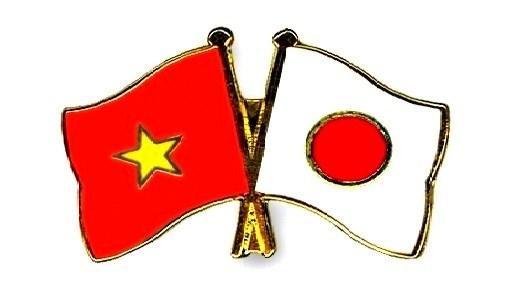 Perspectives de l'investissement du Japon dans l'agriculture a Ha Nam hinh anh 1