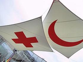 Le Vietnam a la conference du Mouvement de la Croix-Rouge et du Croissant-Rouge hinh anh 1