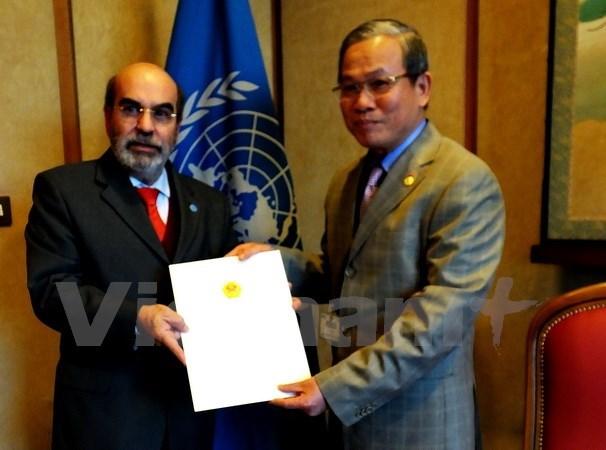 FAO : le Vietnam a des potentiels dans la cooperation Sud-Sud hinh anh 1