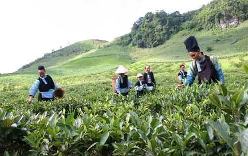 De nombreux engagements d'investissement pour les regions montagneuses hinh anh 1