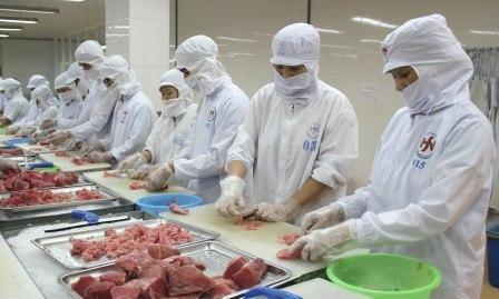 Le TPP ouvre de belles opportunites au thon vietnamien hinh anh 1