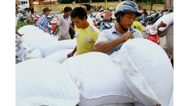 Octroi du riz et des vaccins a Thanh Hoa, a Ninh Thuan et a Ca Mau hinh anh 1