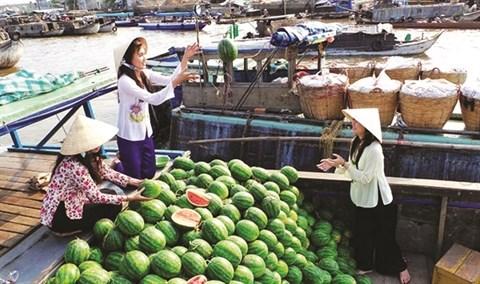 Cinq marches flottants celebres du delta du Mekong hinh anh 3