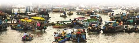 Cinq marches flottants celebres du delta du Mekong hinh anh 2