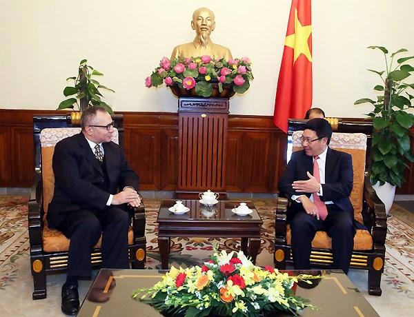 Le vice-Premier ministre Pham Binh Minh rencontre l'ambassadeur turc hinh anh 1