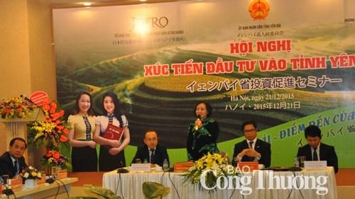 La province de Yen Bai entend attirer les investisseurs japonais hinh anh 1
