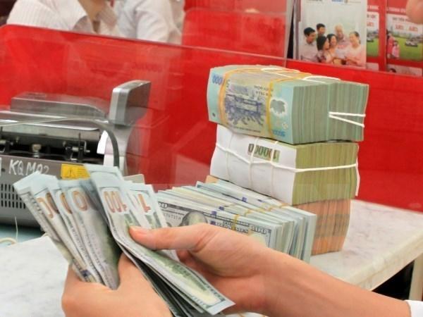 283 millions de dollars verses par les ONG au Vietnam en 2015 hinh anh 1