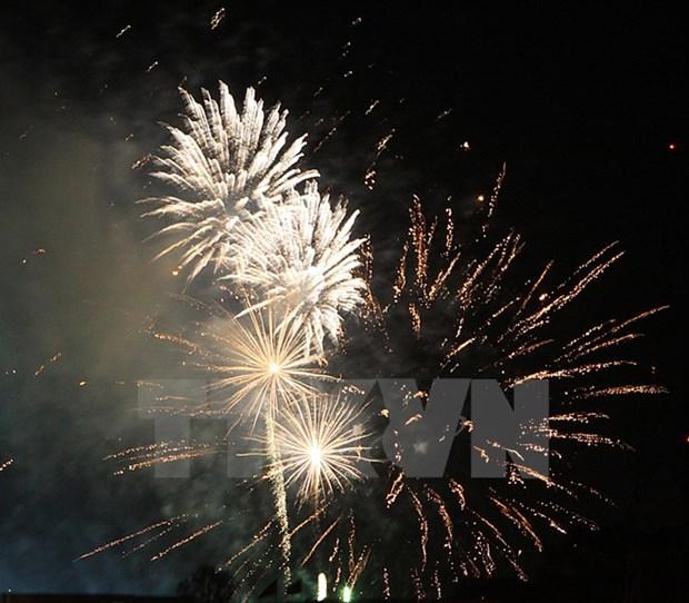 HCM-Ville : de nombreuses festivites pour saluer le Nouvel An hinh anh 1