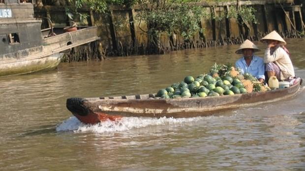 Vinh Long : le tourisme vert fait recette a l'occasion du Nouvel An hinh anh 1