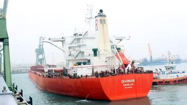 Un cargo de 170.000 tonnes dans le port de Son Duong hinh anh 1