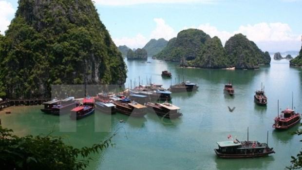 Thrillist : Le Vietnam figure parmi les destinations les plus attrayantes d'Asie du Sud-Est hinh anh 1