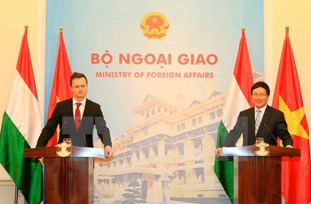 Le Vietnam et la Hongrie s'engagent a renforcer la cooperation mutiforme hinh anh 1