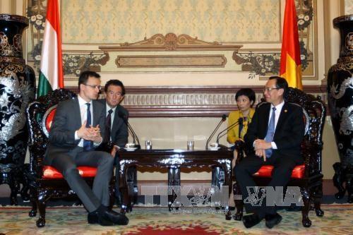 HCM-Ville et Hongrie intensifient leur cooperation dans divers domaines hinh anh 1