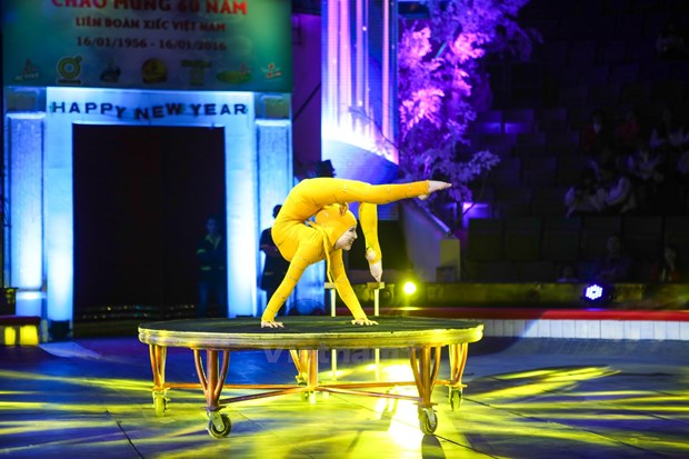 Ouverture du Gala international du cirque 2016 a Hanoi hinh anh 2