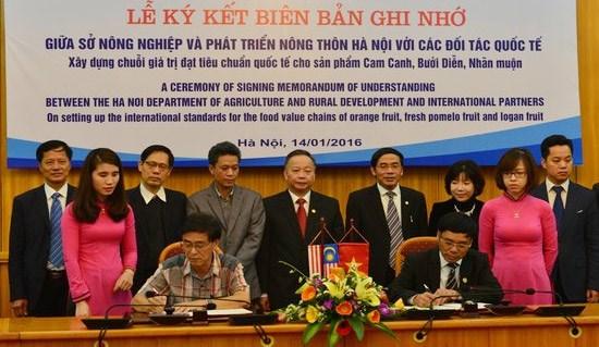 Hanoi va exporter des fruits au Japon et en Malaisie hinh anh 1