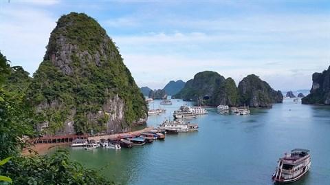De nouvelles grottes se devoilent pres de la baie de Ha Long hinh anh 3