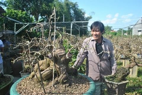 La saison commence au village d'abricotiers de Nhon An hinh anh 2