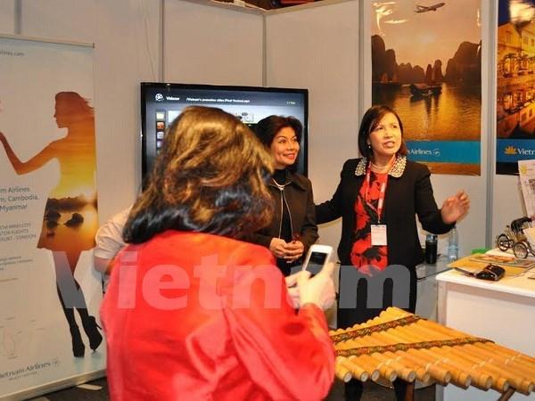 Le Vietnam promeut son tourisme en Norvege hinh anh 1