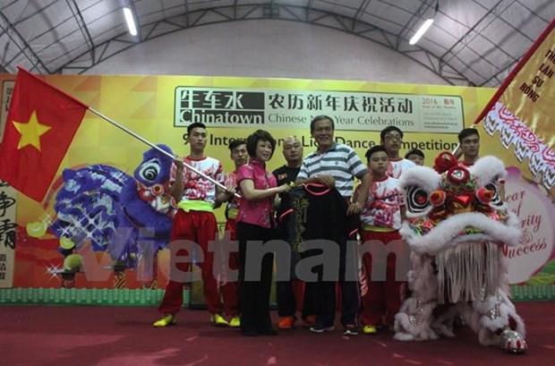 Le Vietnam a un concours international de danse de la licorne a Singapour hinh anh 1