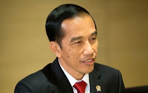 Le president indonesien en visite au Timor-Leste hinh anh 1