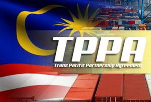 La Malaisie signera le TPP en fevrier prochain hinh anh 1