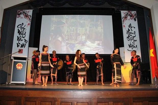 La diaspora vietnamienne en Ukraine et en Australie fete le Tet traditionnel hinh anh 2