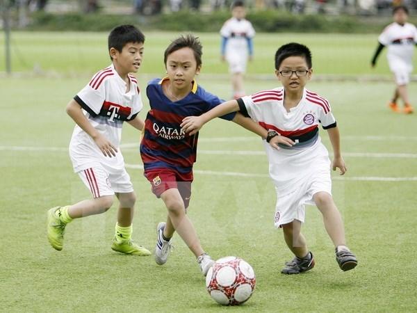La Norvege aide Thua Thien-Hue dans le developpement des clubs de football hinh anh 1